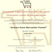 Arwen Jugend-Schönheits-Champion Diplom